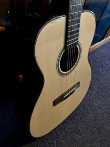 Harvest Guitar Prototype